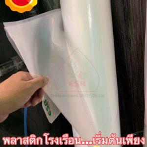 พลาสติกคลุมโรงเรือนใส UV 7% (แบ่งขาย)